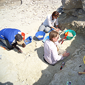 Students at Olduvai